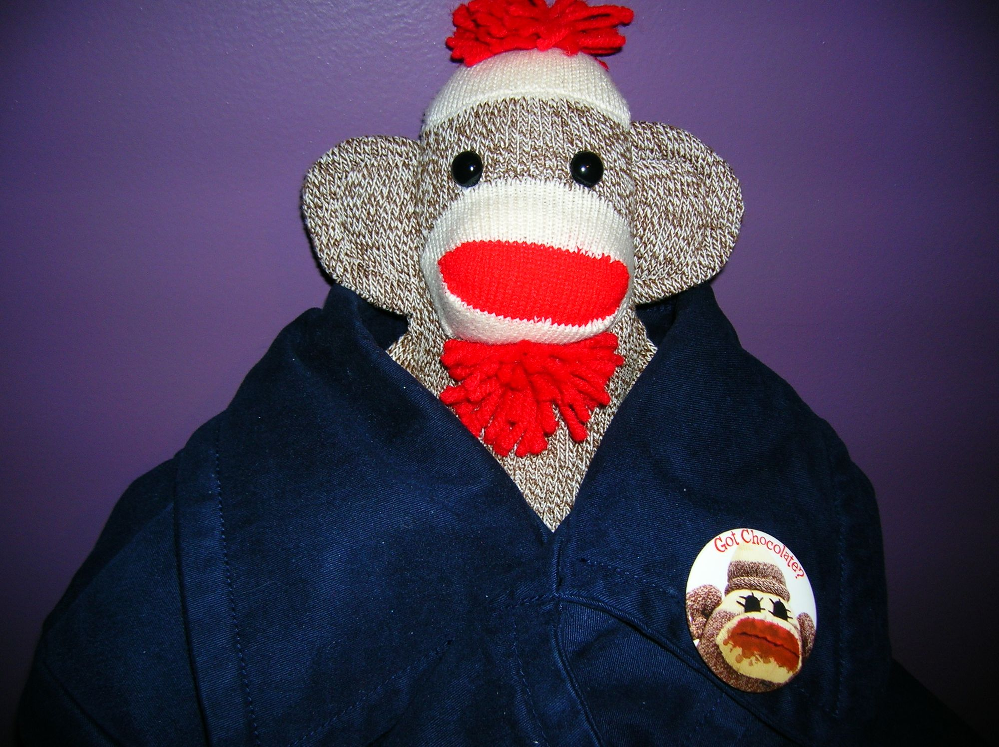 Sock Monkey Pin